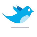 Internet, About Twitter.com
